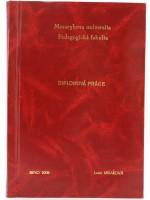 Vazba diplomové práce - kombinace červená/zlatá