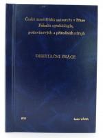 Vazba diplomové práce - kombinace modrá/zlatá